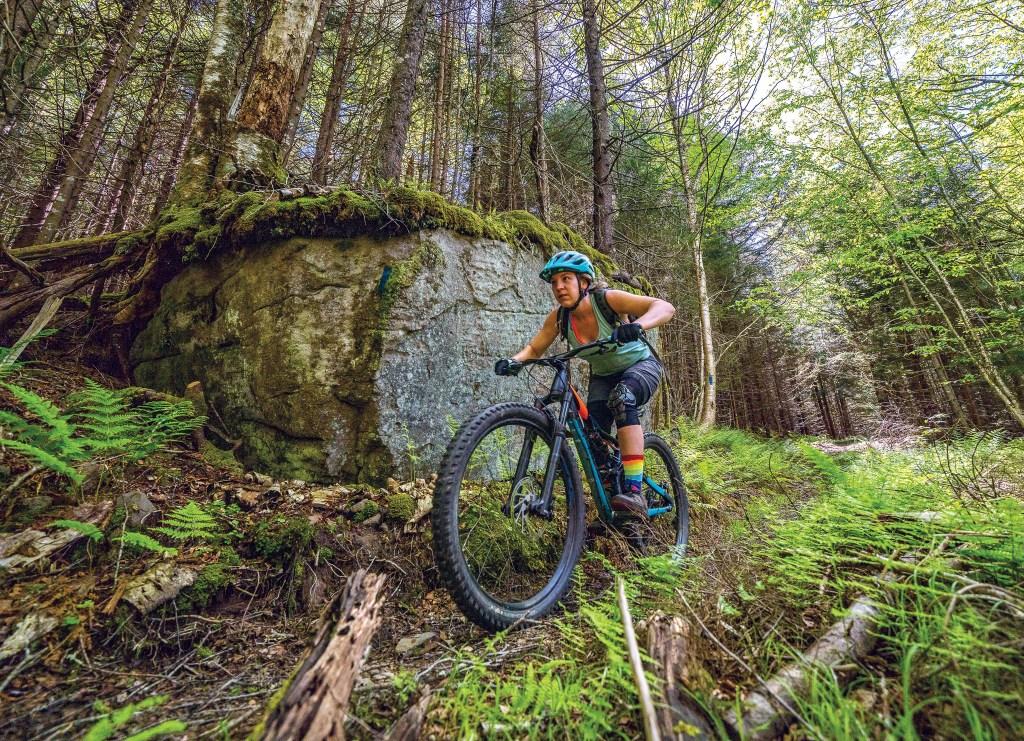 Mower Tract: Biking Hawks Ridge Loop Trail