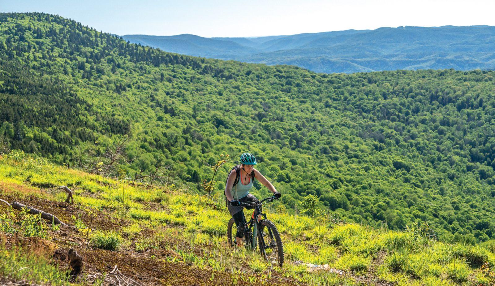 Mower Tract: Hawks Ridge Loop Trail