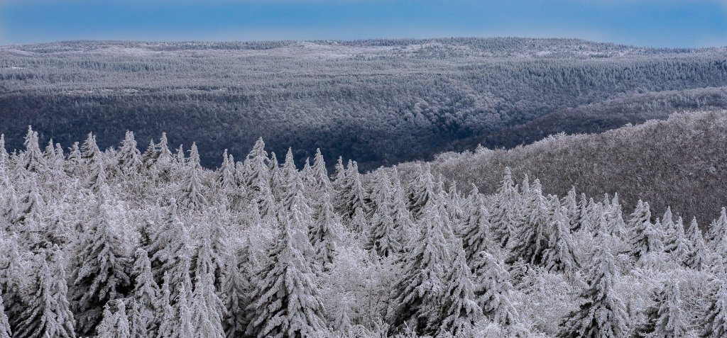 Canaan Valley Weather: Dolly Sods from Cabin Mountain