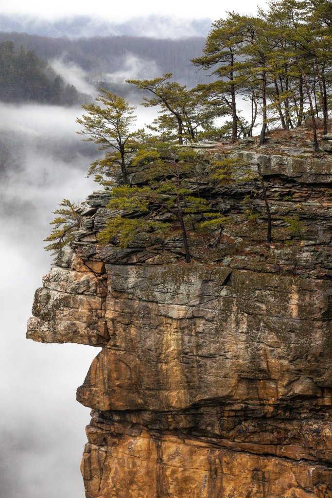 New River Gorge National Park: Idol Point