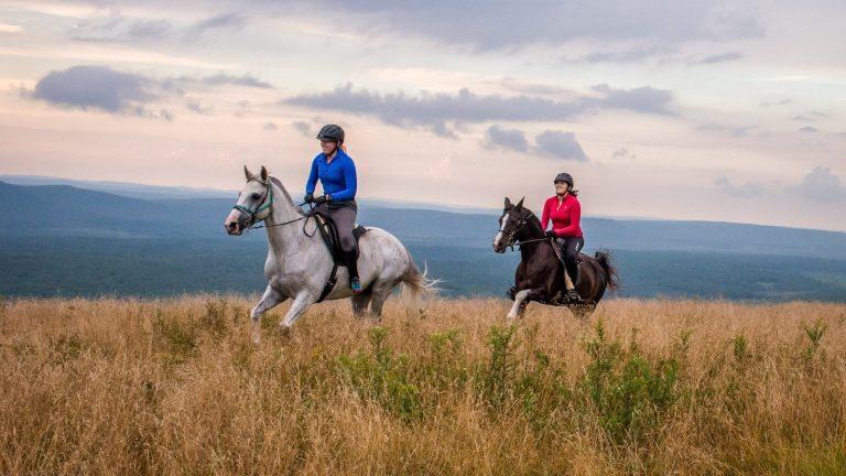 Horseback - Rocky Ridge