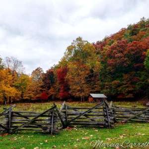 Monterey, McDowell, Blue Grass, Valley, Doe Hill, Jack Mountain, farm, rural, Highland County, Virginia, tourism, travel, fall, autumn, leaves, color, travel, road, trip, trees, mountains, photography, photograph, art, landscape, maple