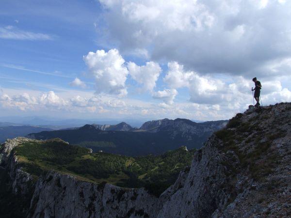 Image result for treskavica