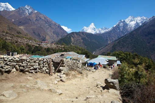 Dropping down towards the river between Namche Bazaar and Tengboche to make the river crossing before taking the steep trail back up the next hill to Tengboche.