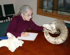 Diane Iverson Art Class