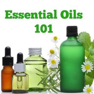 essentials101-2