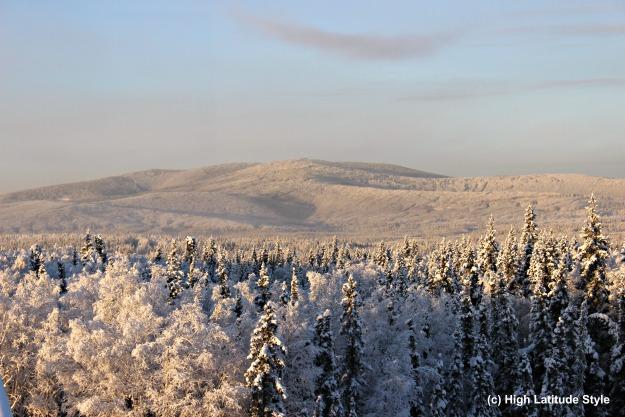 Alaska foothills of the White Mountains