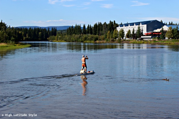 #Alaskalifestyle dog taking a ride on a board on an Alaska river