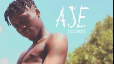 Photo of Fireboy DML – Dont Say No + Aje (Cover)