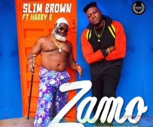 Slim Brown ft Harry B - ZAMO ZAMO