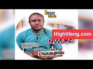 Chukwujindu - Drivers Welfare | New Igbo Highlife Music 2020