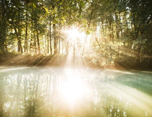sunlight on water represents your high sensitivity being someone's answered prayer