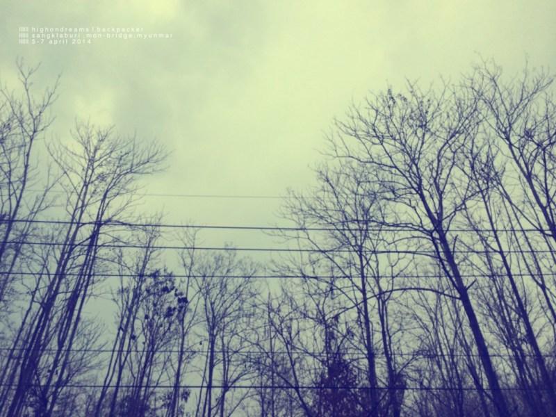 IMG_2216_Fotor