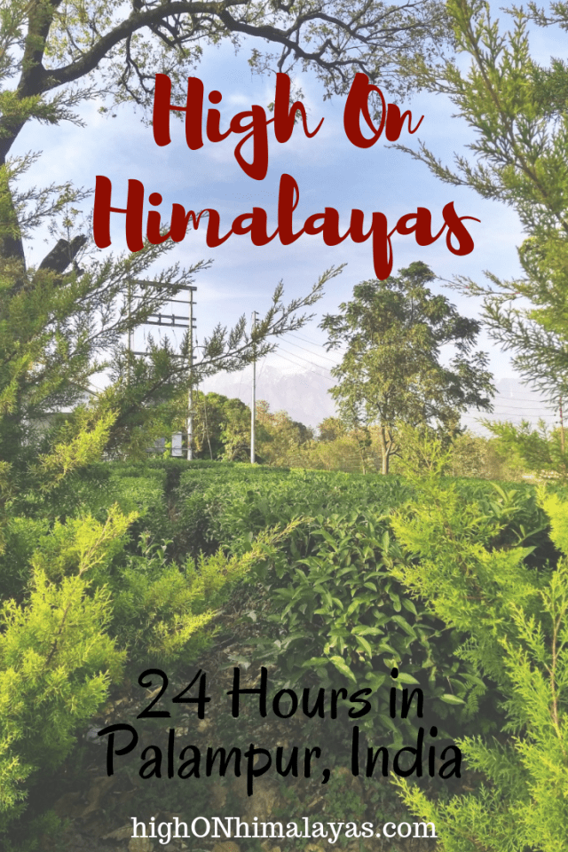 The High on Himalayas Guide - 24 Hours in Palampur, India