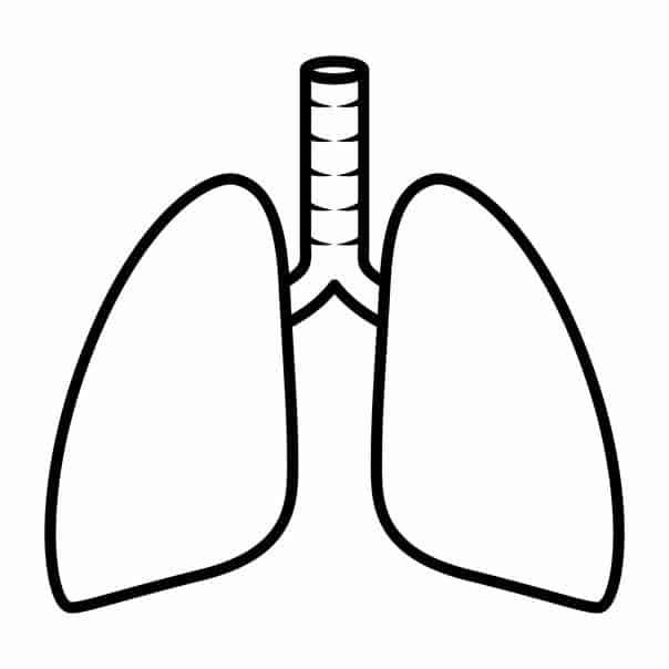 Asbestos Mesothelioma Information for HVAC Technicians