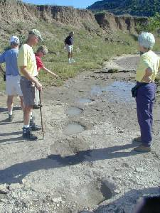 Are they fresh? Dinosaur Tracks in the Cimmaron River during the Highpointers 2002 Convention at Black Mesa, Oklahoma