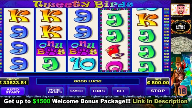 Casino 86000 blackjack billy brandon