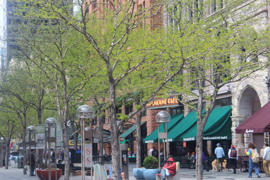 Photographer Veronica Godoy takes photo of Coloradans walking in downtown Denver.  During breaks in the conference, students were able to explore Downtown Denver. They went to restaurants, bought souvenirs and enjoyed the sights. (Veronica Godoy )