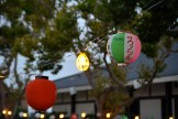 Lanterns hang over the trees