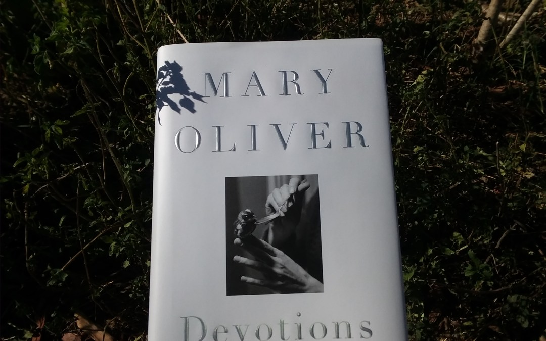 Book review: Mary Oliver's 'Devotions'
