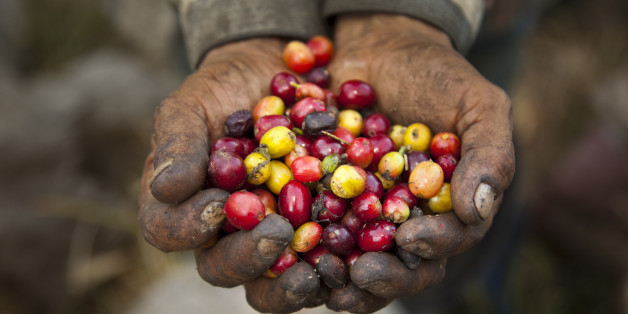 """Opinion: The importance of buying """"Fair Trade Certified"""""""