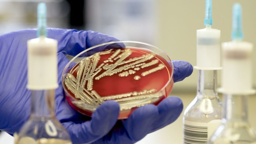 Antibiotic resistance poses a major threat to global health, studies show