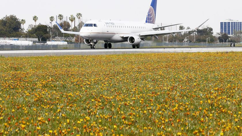 Opinion: My unique, peaceful experience at the airport
