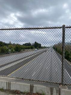 Usually full: Highway 101, normally bustling with traffic, is now nearly deserted as California Governor Gavin Newsom issues a stay-at-home order. (Photo by Sophie Robson)