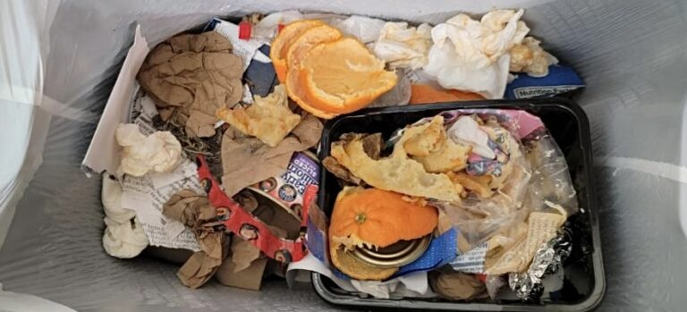 Opinion: How to reduce your food waste