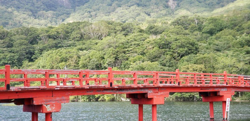 赤城神社、啄木鳥橋。
