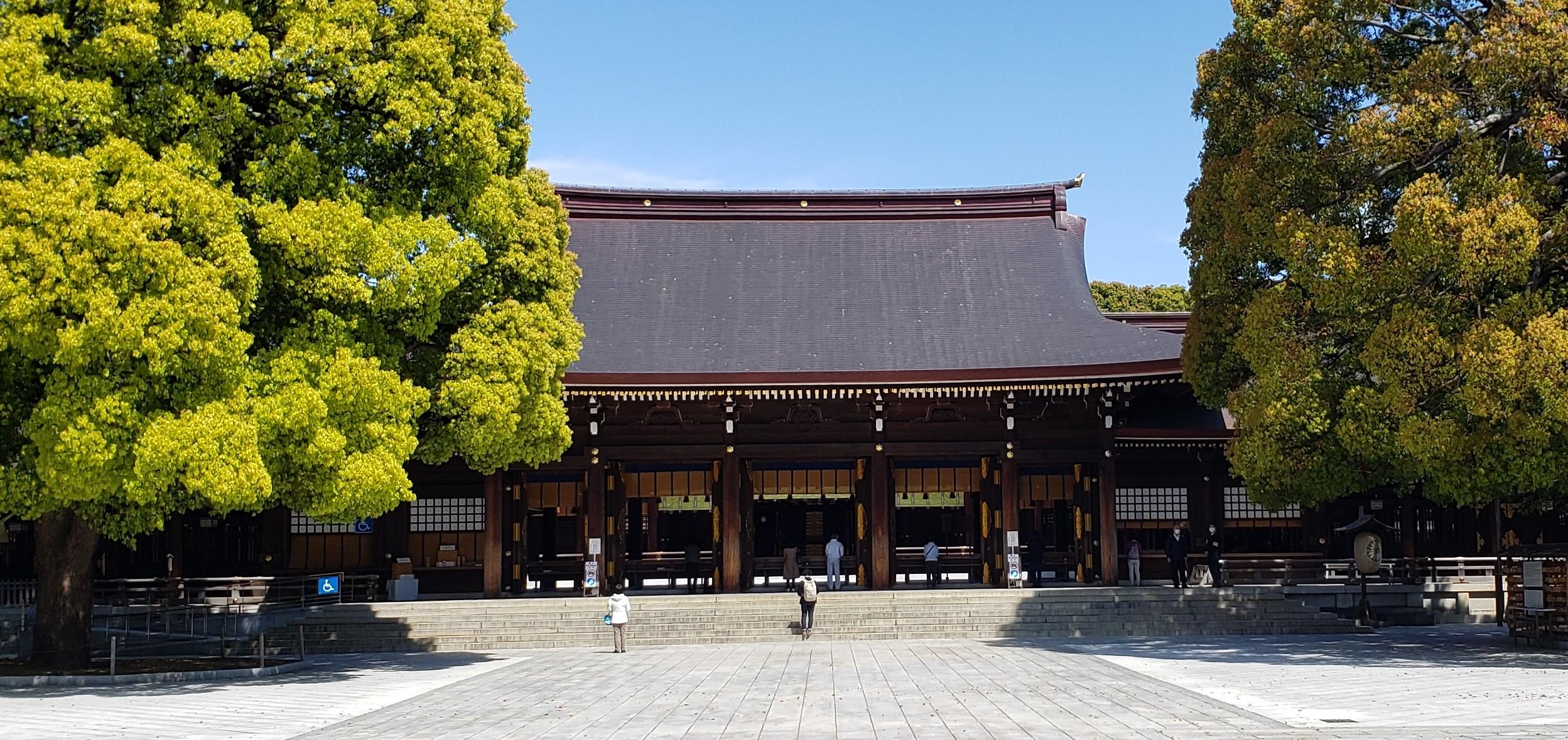 東京屈指のパワースポット明治神宮。おすすめの行き方と吉凶が無いおみくじの魅力!明治神宮。おすすめの行き方と吉凶が無いおみくじの魅力!
