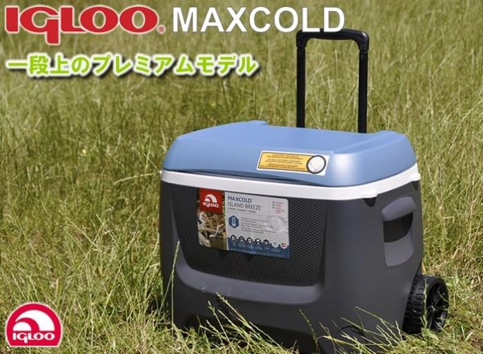igloo62qt_premium-sub1