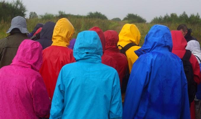 rainy-weather-2254956_1920