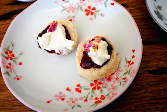 Homemade scones with jam and cream