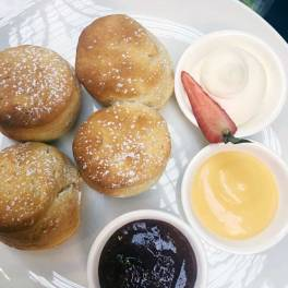 Buttermilk scones with Darbo jams, lemon curd, double cream and