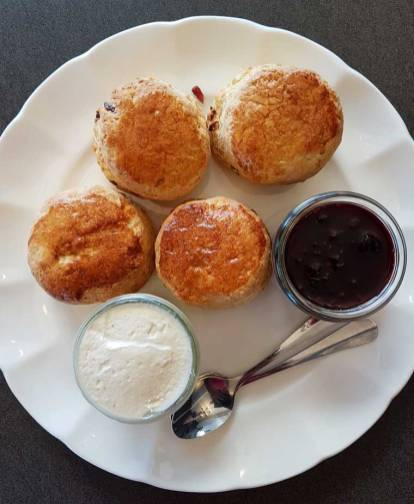 Buttermilk scones with homemade preserve and whipped cream
