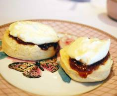 Freshly baked scones with Stefano's jam and whipped cream