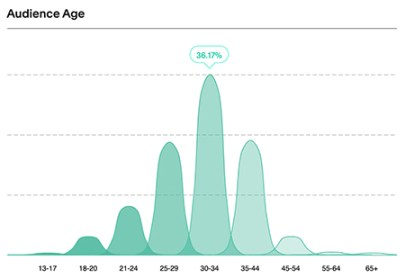 Demographics - Audience Age
