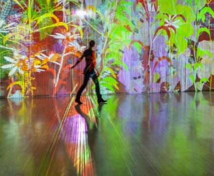 Fractal. Artificial Paradises, de Miguel Chevalier