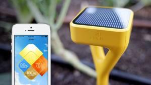 Gadgets para plantas e jardim. Sensor para jardins Edyn