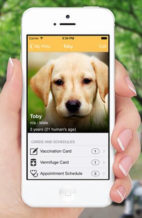 As melhores apps para o seu cão. My Pets