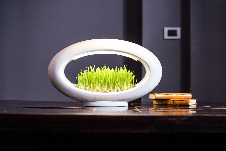 Grasslamp. Plantas, luz e design, para trazer a Natureza para dentro de casa