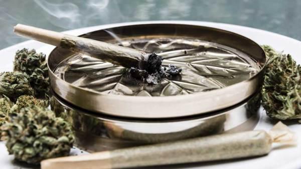 Massachusetts Considers Legalizing Cannabis Clubs