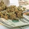 Lawmaker Asks Medical Marijuana Users To Pay For Anti-Drug Program
