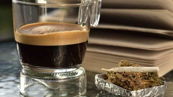 Not All Stoners Sleep Til Noon: A Guide to Productive Waking and Baking