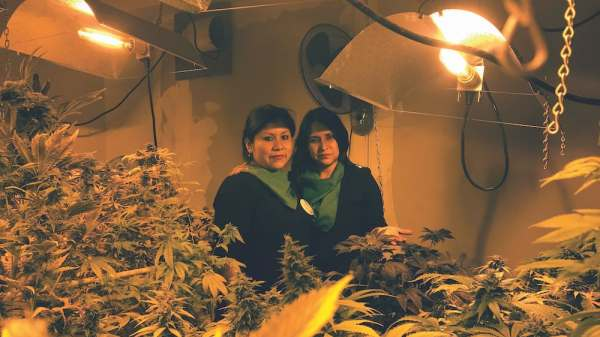 A Mother's Courage in Peru: Facing Prison for Giving Her Son Medical Marijuana