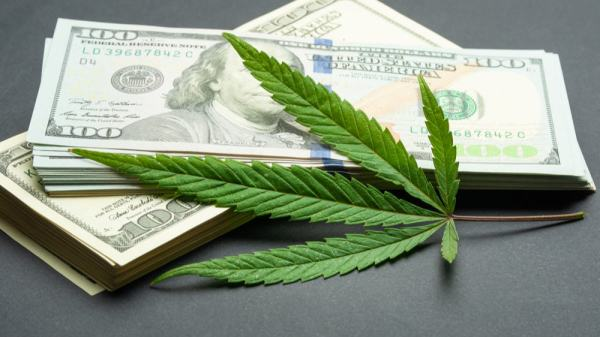 Investing Cannabis Stocks Could be Trouble for Department of Defense Employees
