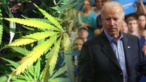 Joe Biden Supports Marijuana Decriminalization, Not Legalization