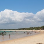 Bahia beaches, great trips and lots of fun