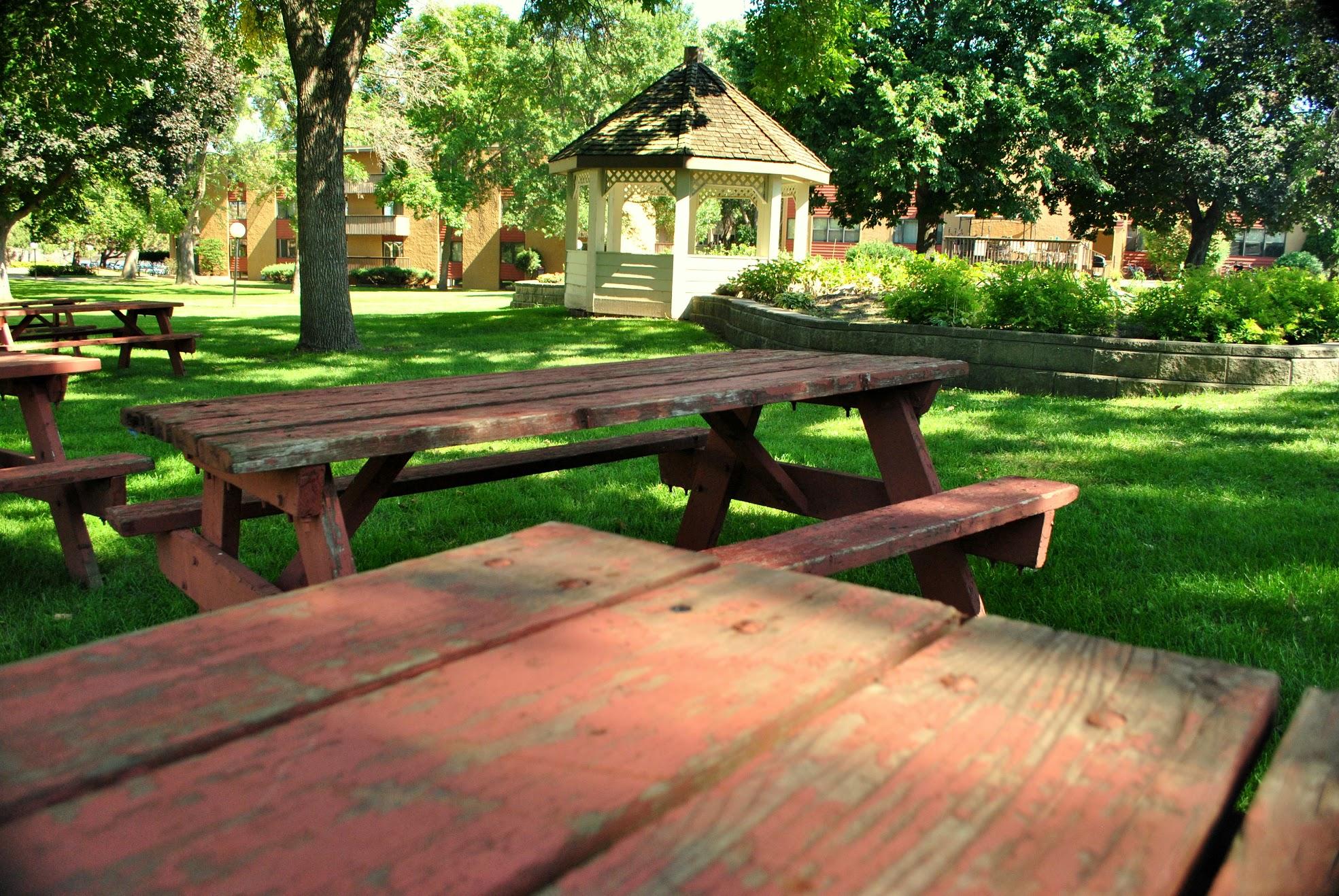 BGU-Campus-Summer2014-1505